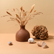 Still life in beige colors - PhotoDune Item for Sale