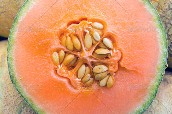 Detail of a honeydew melon - Stock Photo - Images