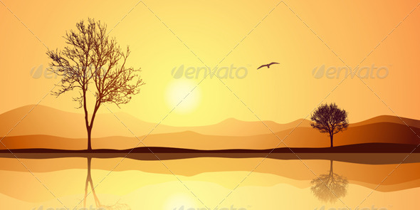 Landscape with Reflection - Landscapes Nature