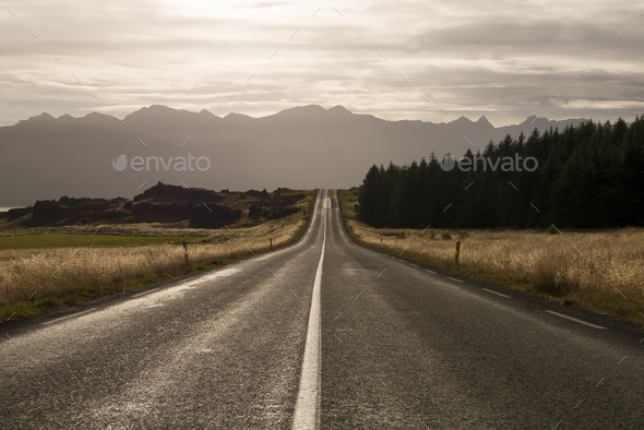 Amazing landscape on the road in the East Fjords in Iceland - Stock Photo - Images