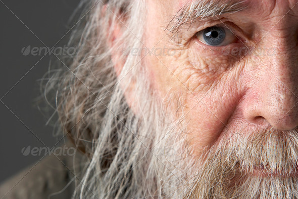 Senior Man With Long Beard - Stock Photo - Images