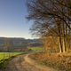 Sandy path close to the Dutch city Maastricht - PhotoDune Item for Sale