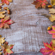 Thanksgiving  greeting background with rye, acorn and fall maple leaves - PhotoDune Item for Sale