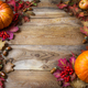 Thanksgiving or fall concept with pumpkins and apples, copy space - PhotoDune Item for Sale