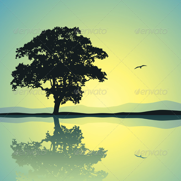 Lone Tree - Landscapes Nature