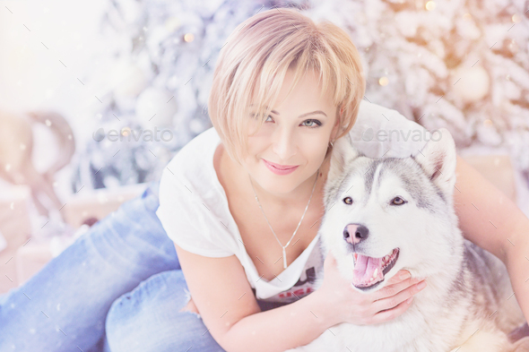 Beautiful blonde woman sits with husky dog near christmas tree. - Stock Photo - Images