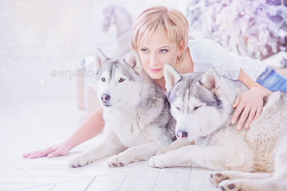 Beautiful blonde woman sits with two husky dogs near christmas tree. - Stock Photo - Images