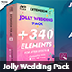 Jolly Wedding Pack - VideoHive Item for Sale