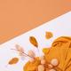 Fall Winter minimalist - PhotoDune Item for Sale