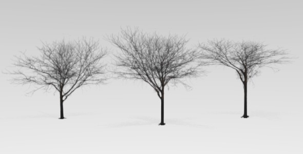 Blender low polly tree  - 3DOcean Item for Sale