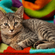 Young gray striped kitten lies on a colorful textile background - PhotoDune Item for Sale