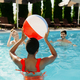 Smiling friends play with ball in the pool - PhotoDune Item for Sale