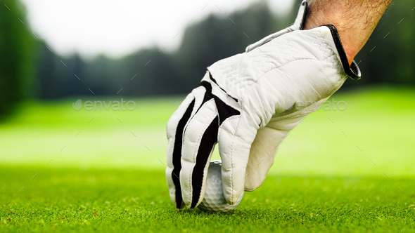 Male hands in a white glove put a ball on the course - Stock Photo - Images