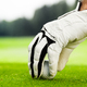 Male hands in a white glove put a ball on the course - PhotoDune Item for Sale