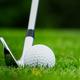Golf club kicking the ball on green grass - PhotoDune Item for Sale