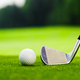 Golf club and ball on the golf course - PhotoDune Item for Sale