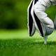 Male hands in a white glove put a golf ball - PhotoDune Item for Sale