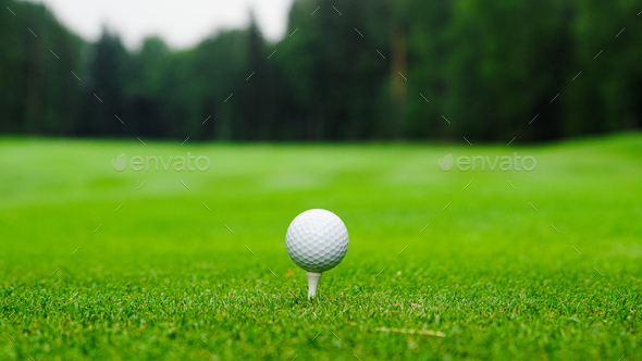 Golf ball on the golf course - Stock Photo - Images