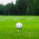 Golf ball on the golf course - PhotoDune Item for Sale