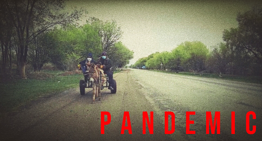 Pandemic Collection
