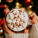 Close up of women's hands holding white mug with hot cocoa, tea or coffee and marshmallow. - PhotoDune Item for Sale