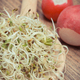 Alfalfa and radish sprouts on wooden spoon. Healthy addition to sandwiches - PhotoDune Item for Sale