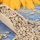 Sunflower seeds with wooden scoop and beautiful vibrant flower - PhotoDune Item for Sale