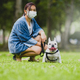 A woman wearing a medical mask sitting on the lawn with a white French bulldog. - PhotoDune Item for Sale