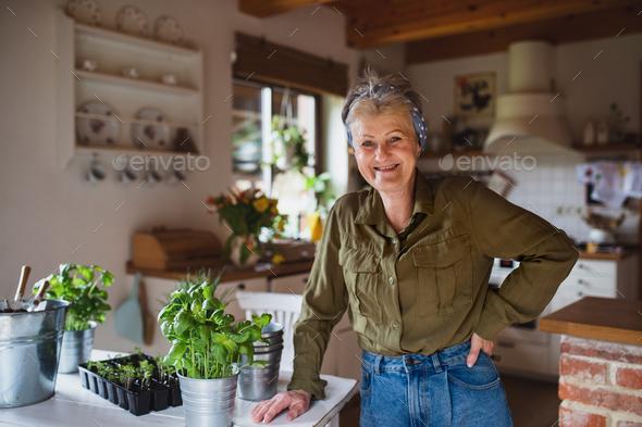 Happy senior woman planting herbs indoors at home, looking at camera - Stock Photo - Images
