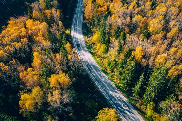 Aerial view of road in autumn forest with red and orange leaves. - Stock Photo - Images