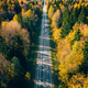 Aerial view of road in autumn forest with red and orange leaves. - PhotoDune Item for Sale