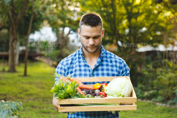 Caucasian man standing in garden holding box of fresh organic vegetables - Stock Photo - Images