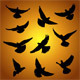 Doves - GraphicRiver Item for Sale