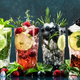 Cocktails drinks. Classic long drink or mocktail highballs with berries, lime, herbs and ice - PhotoDune Item for Sale