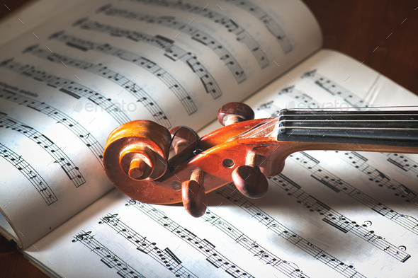 Detail of violin - Stock Photo - Images