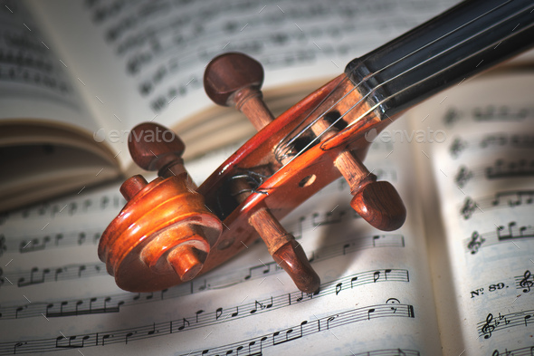 Detail of a violin handle - Stock Photo - Images