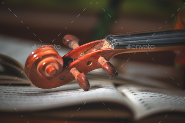 Violin handle - Stock Photo - Images