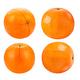 orange fruit on white background - PhotoDune Item for Sale