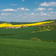 Spring countryside landscape - PhotoDune Item for Sale