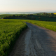 Road through the spring countryside - PhotoDune Item for Sale