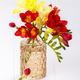 Yellow and red freesias - PhotoDune Item for Sale
