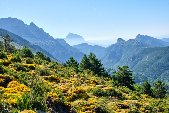 Beautiful landscape in the spanish Pyrenees - Stock Photo - Images