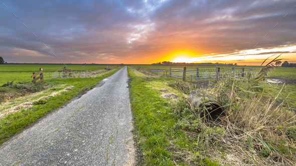 Sunset over rural road in meadow grassland - Stock Photo - Images