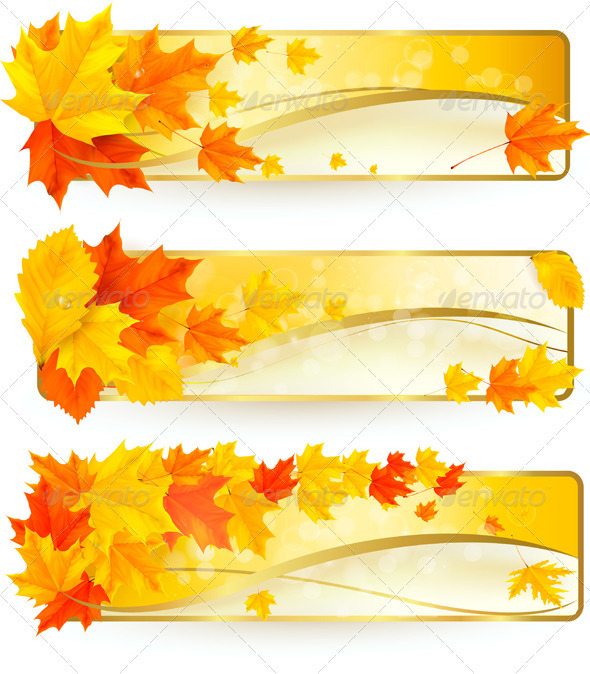 Three autumn banners with colorful leaves in golde - Seasons Nature