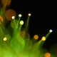 Abstract background of colorful lights - PhotoDune Item for Sale