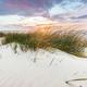 Beach grass on dune, Baltic sea at sunset - PhotoDune Item for Sale