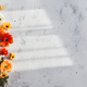 Grey concrete flat lay background with colorful autumn flower heads - PhotoDune Item for Sale