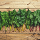 Rainbow swiss chard leaves on wooden background, raw green leaf vegetables, top view, copy space - PhotoDune Item for Sale