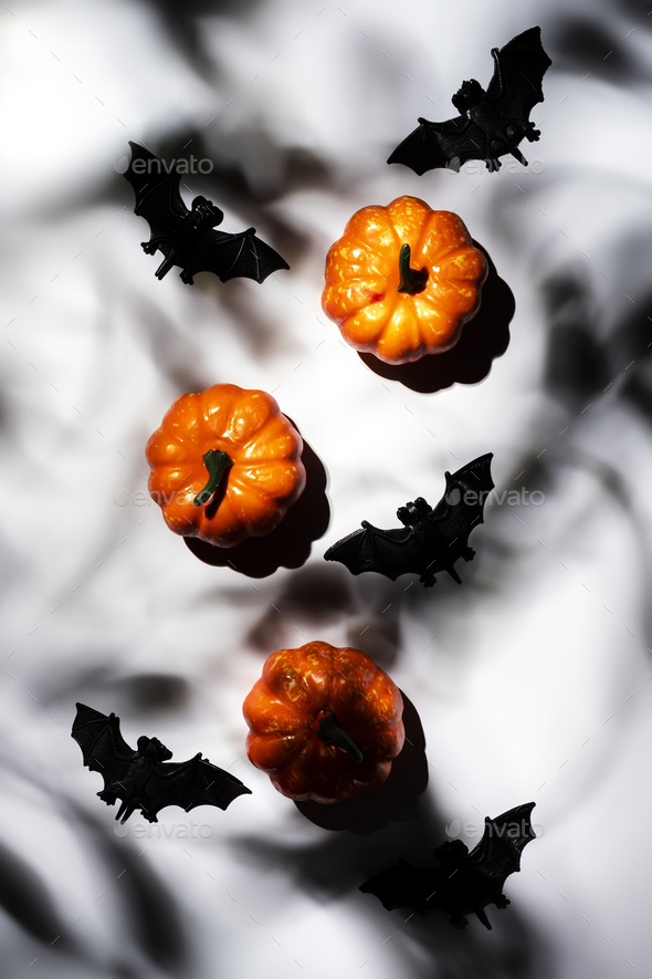 Happy Halloween white background with pumpkins, bats, spiders with copy space. Hard light - Stock Photo - Images