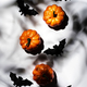 Happy Halloween white background with pumpkins, bats, spiders with copy space. Hard light - PhotoDune Item for Sale